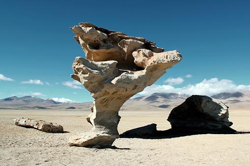 Stone Tree (Árbol de Piedra)