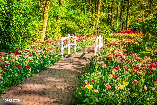 Stone paved walk way winding in spring formal flower garden Keukenhof, Holland, retro toned