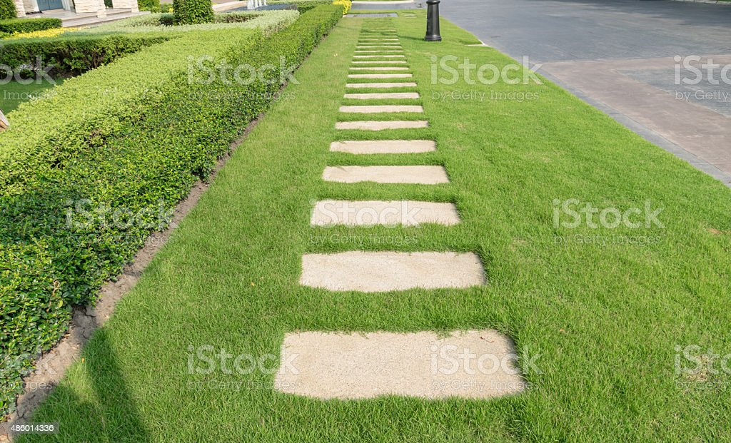 stone walkway on green grass in the garden stock photo