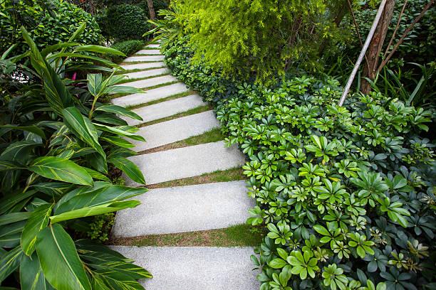 Stone walkway winding its way through tranquil garden stock photo