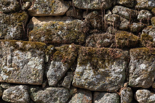Stone wall covered with moss, Allariz, Galicia, Spain