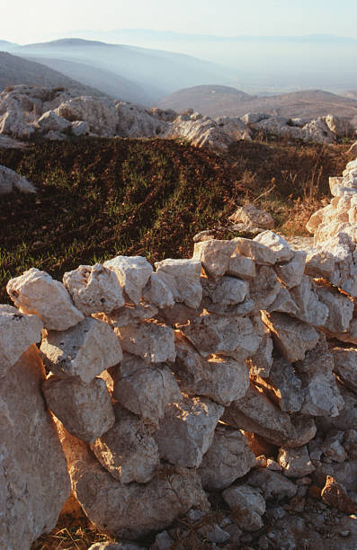 Stone wall enclosing barley field in northern Syria stock photo