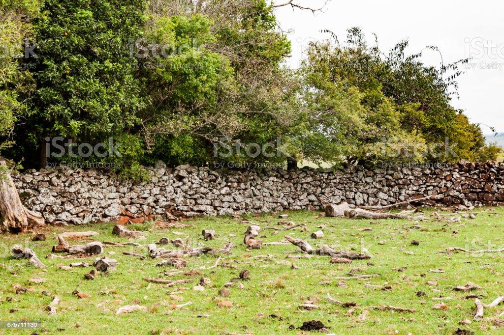 石頭牆農場巴西 免版稅 stock photo