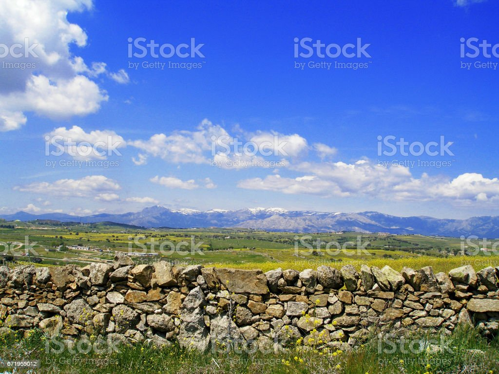 Stone wall in the meadow stock photo