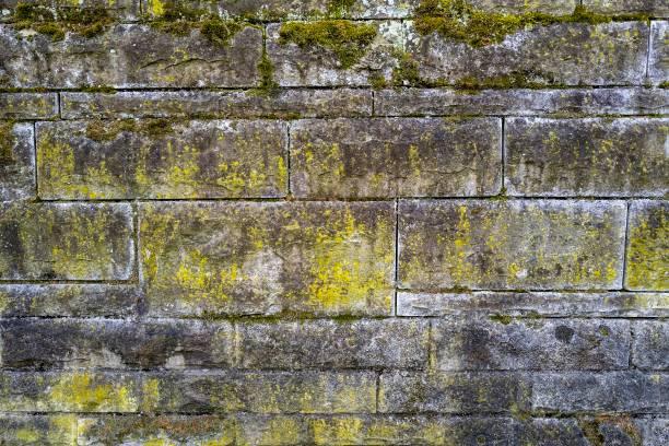 Steinmauer – Foto