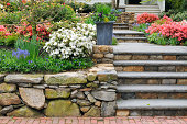 istock Stone Wall, Steps and Planter on Colorful Garden 131897935