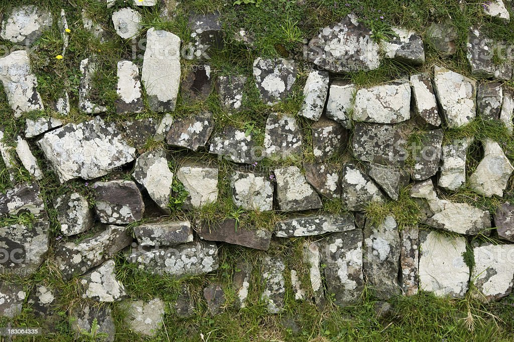 Stone wall with grass stock photo