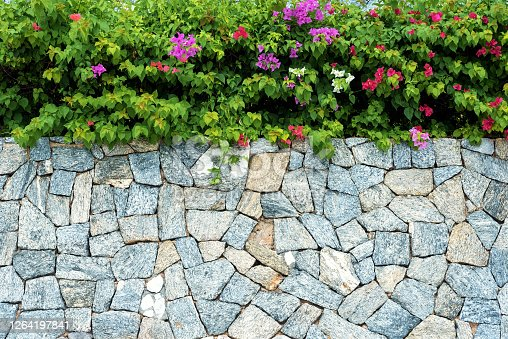 Stone wall with tropical floral copy space scene