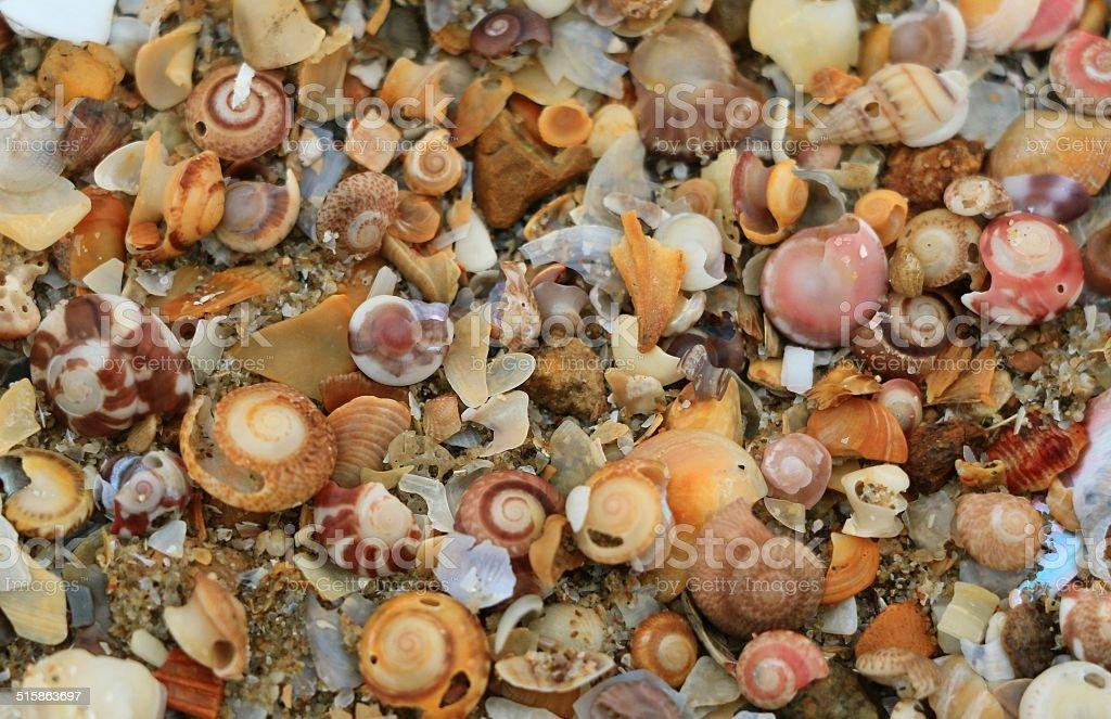 Stone Wallpaper on the beach stock photo