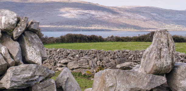 Stone walls along the Wild Atlantic Way, Ballyvaughan, county Clare, Ireland. Stone walls along the Wild Atlantic Way, Ballyvaughan, county Clare, Ireland. county clare stock pictures, royalty-free photos & images
