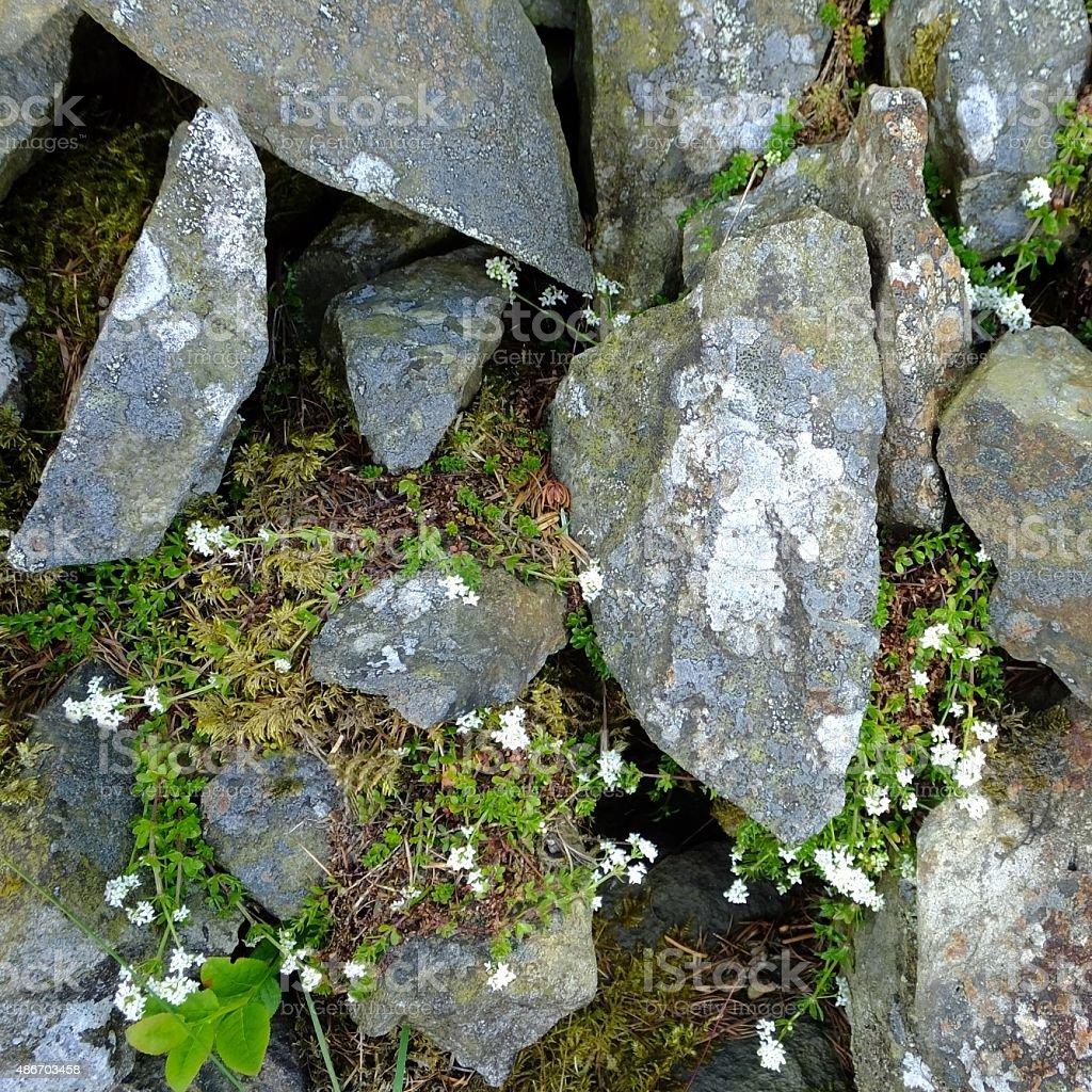 Stone Walls stock photo