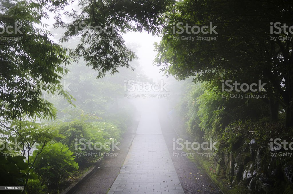 stone way of a misty royalty-free stock photo
