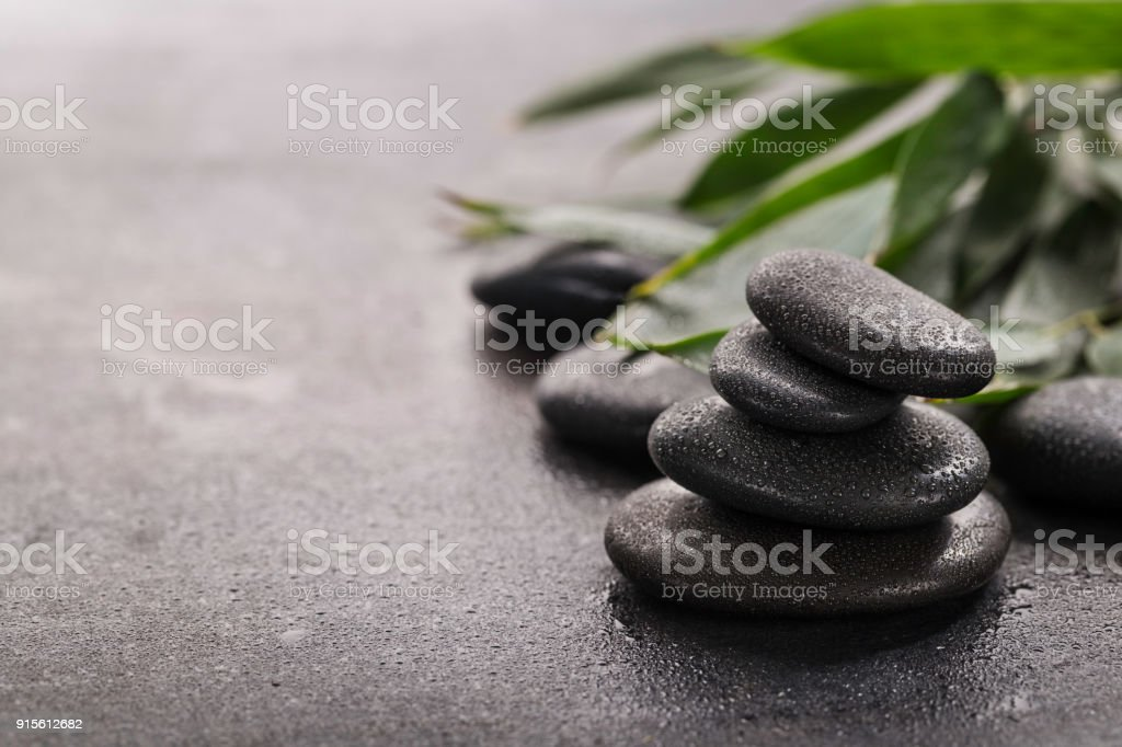 Stones and green leaves stock photo
