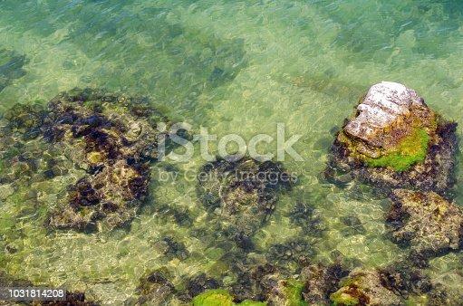 Russia, the Black Sea, the southern coast of the Crimean Peninsula