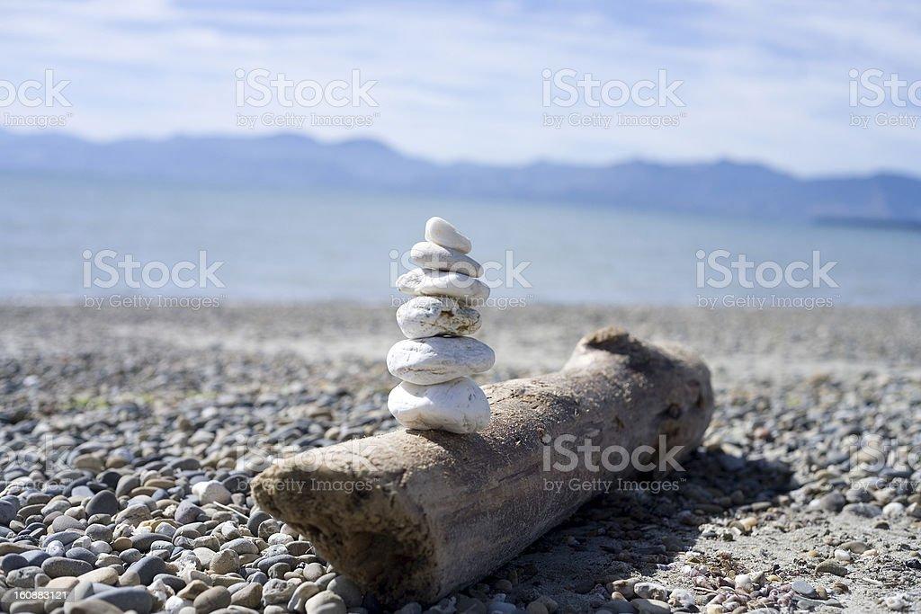 stones, beach, wood, New Zealand stock photo