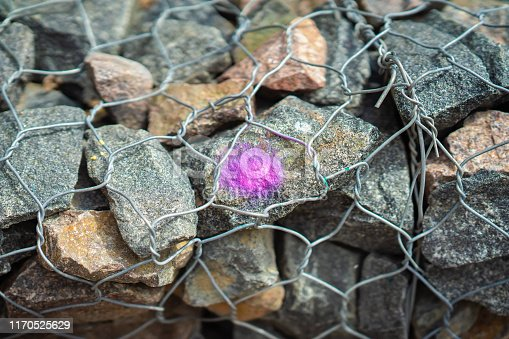 Stones in Metal mesh netting, wire. Purple spot as design. Background for modern topics
