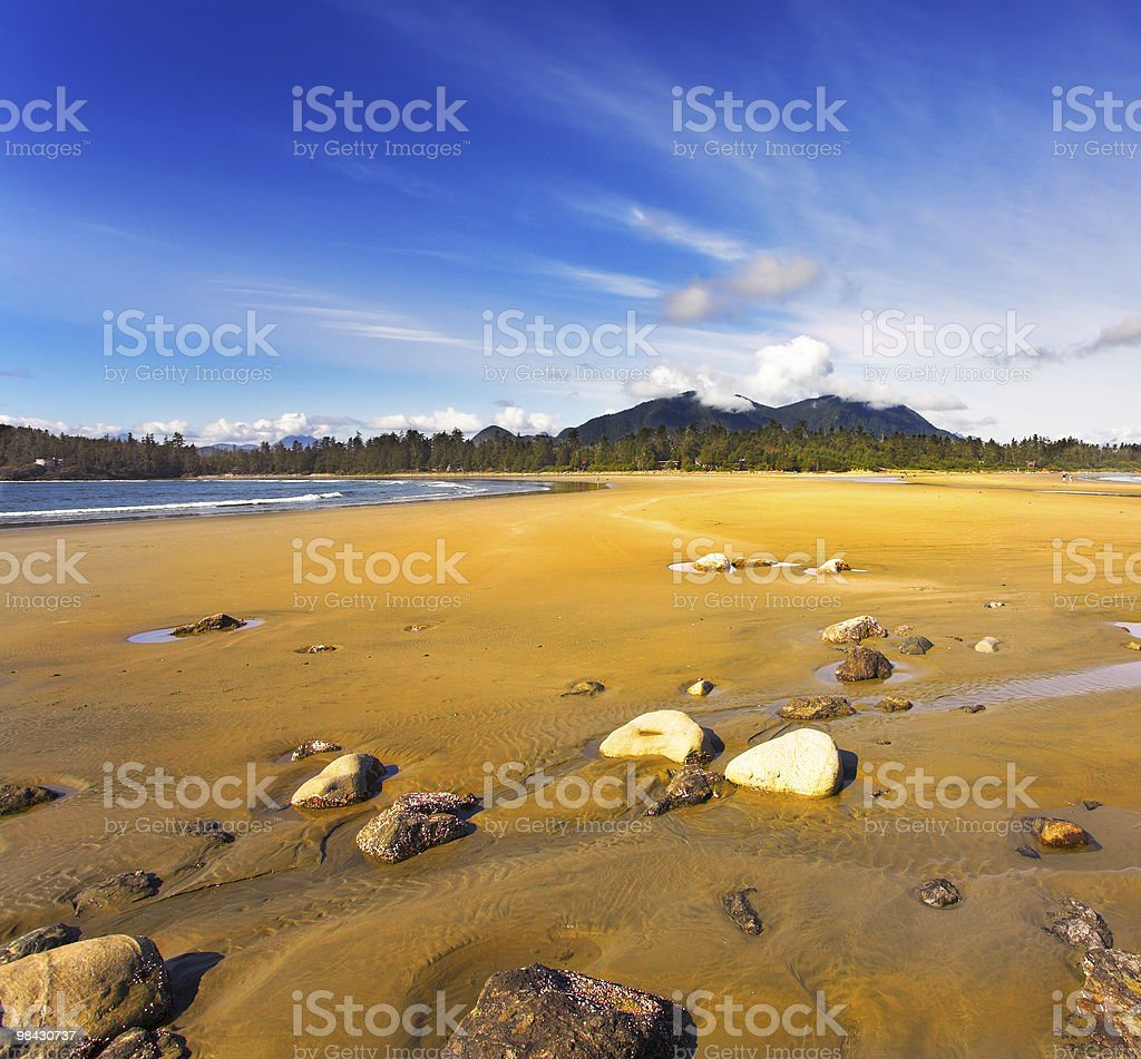 Stones on beach Pacific ocean royalty-free stock photo