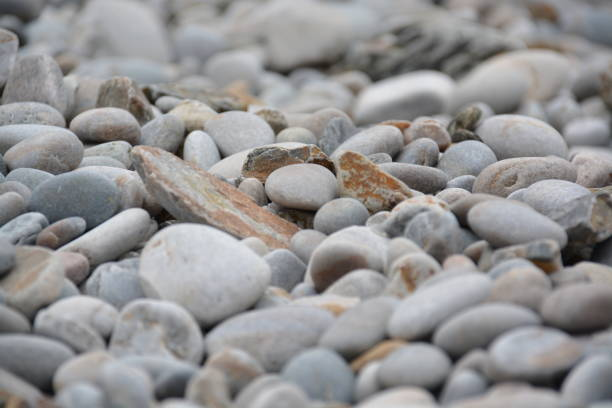 Piedras en la playa - foto de stock