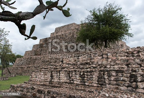 Stonework of Piramide de Cañada de la Virgen (Pyramid of Glen of the Virgin) with large overhanging cactus, Mexico