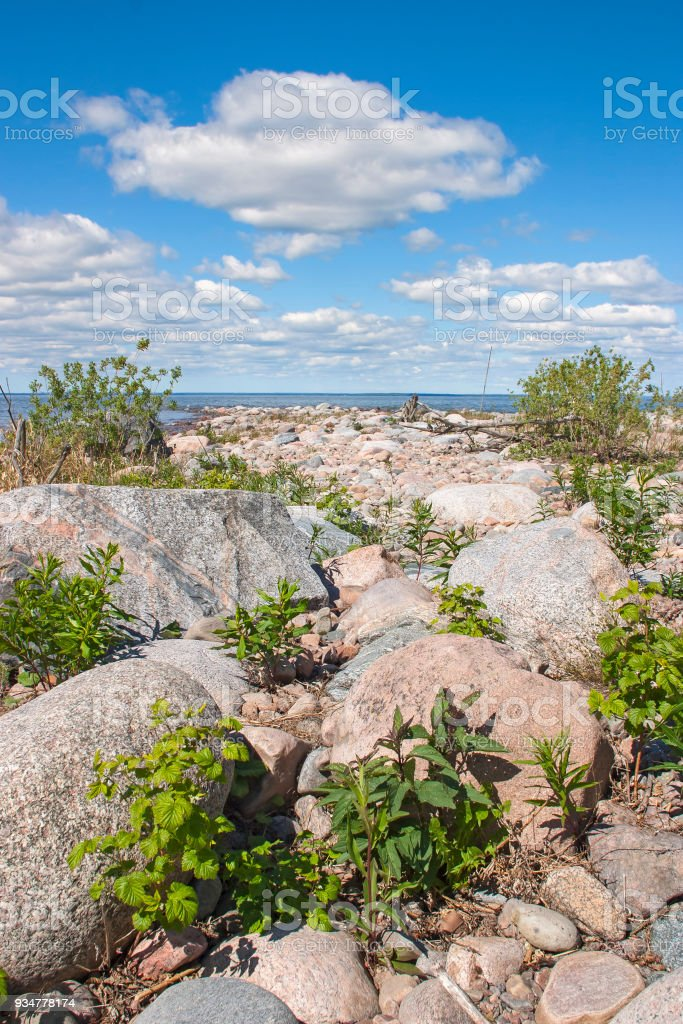 Stoney beach with green plants by a lake stock photo