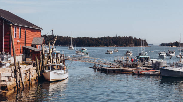 stonington, maine lobster boats - katiedobies stock pictures, royalty-free photos & images
