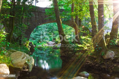 stony arch bridge over the forest streamCHECK OTHER SIMILAR IMAGES IN MY PORTFOLIO....