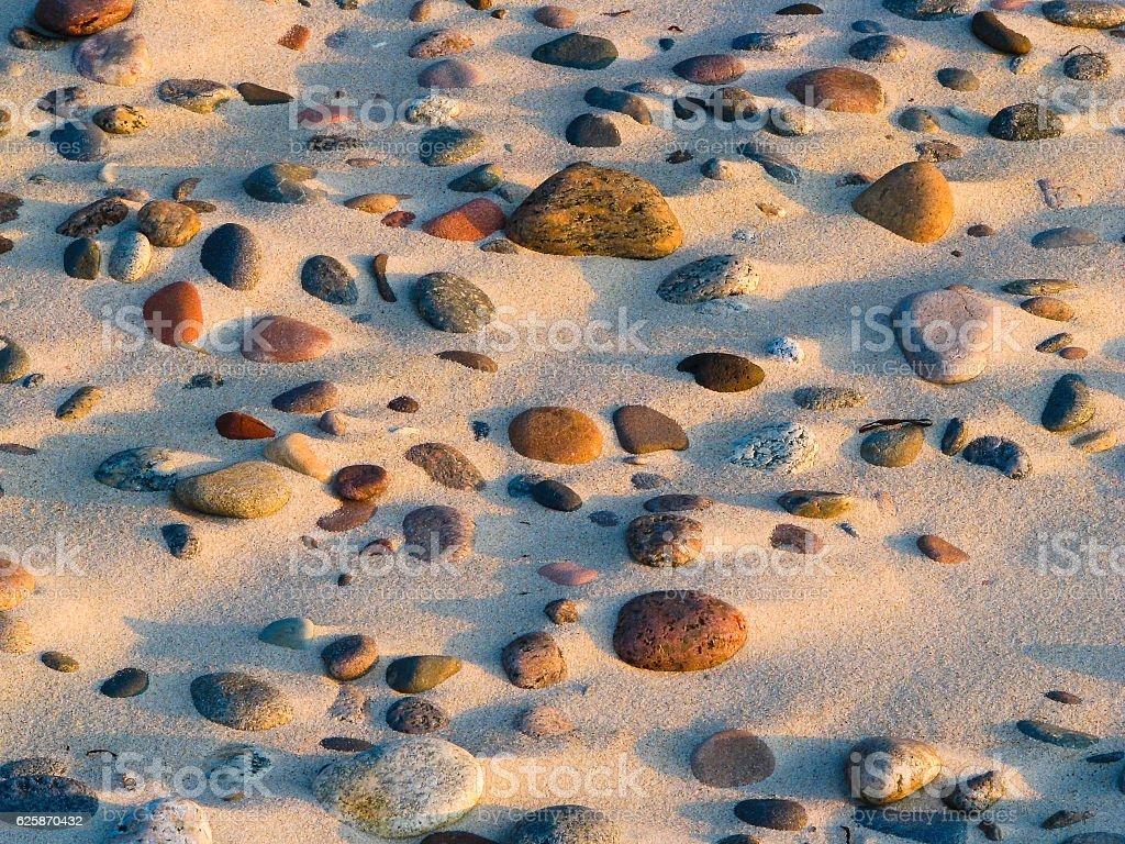 Stony baltic each texture at sunny summer stock photo