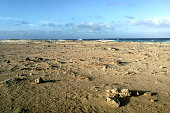 Stony beach at sunset light and blue sky