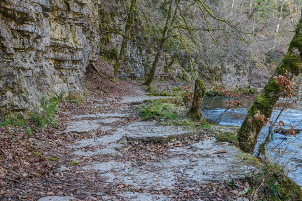 Stony, slippery trail through the Wutach Gorge. stock photo