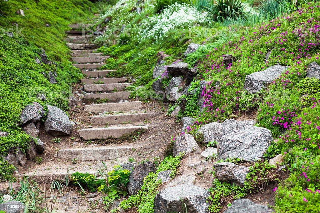 Photo libre de droit de Stony Escaliers Dans Le Jardin ...