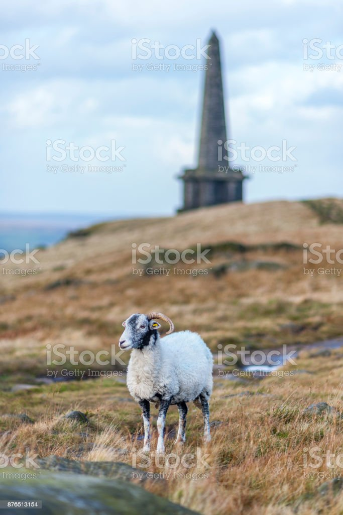 stoodley pike mounument calderdale stock photo