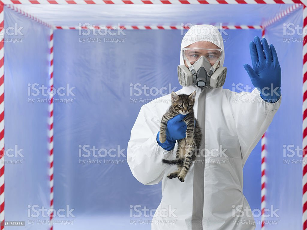 stop animal testing stock photo