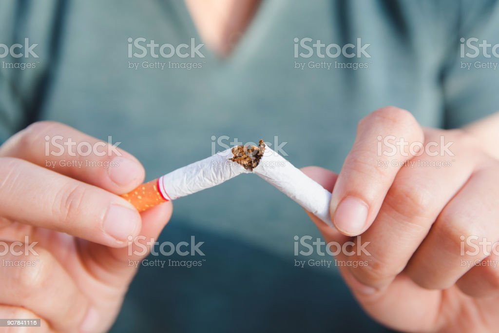 Stop cigarette, woman hands breaking the cigarette with clipping path stock photo