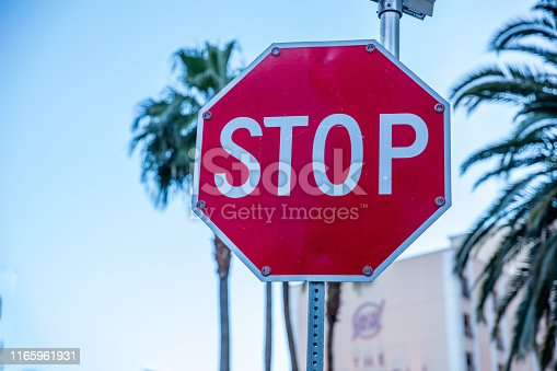 Stop road sign. Blur palm trees and blue sky background. Sunny spring day in California