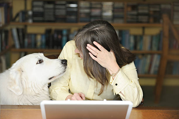 Stop working and play with me stock photo
