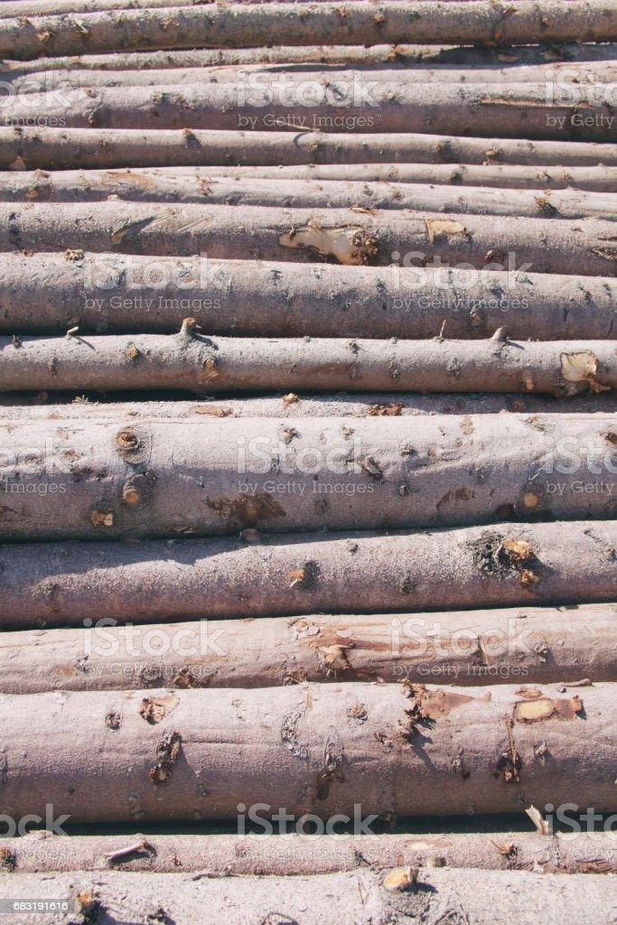 Storage of logs. Logging. royalty-free 스톡 사진