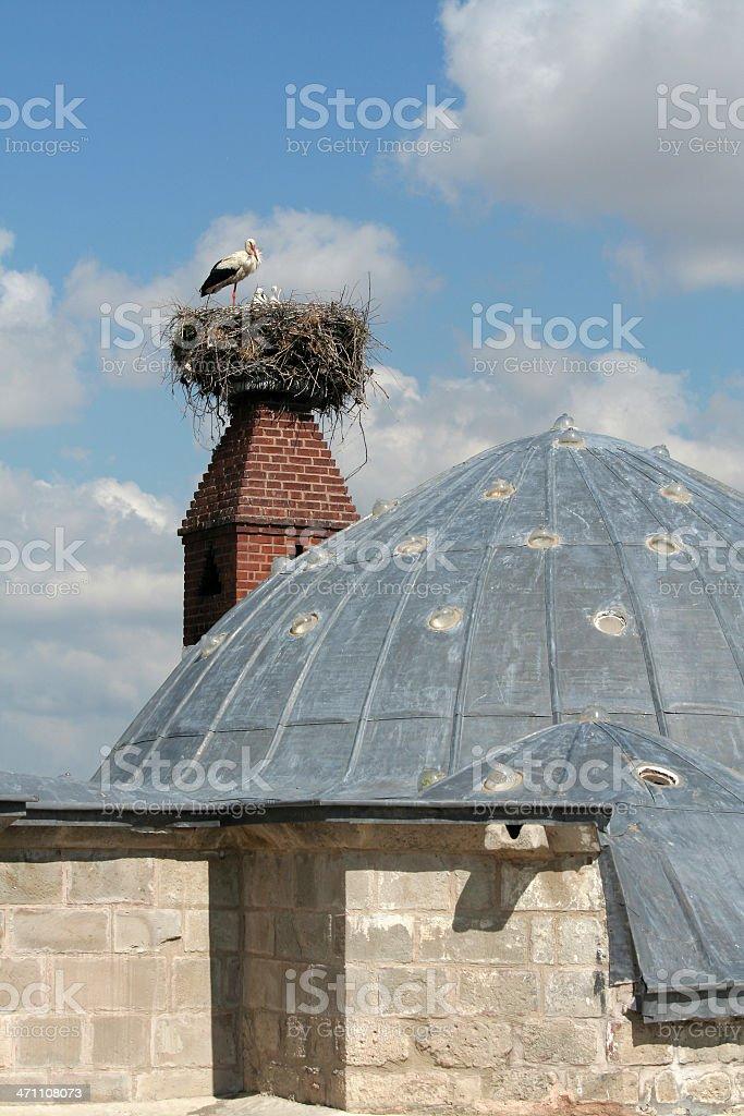 Stork Nest royalty-free stock photo