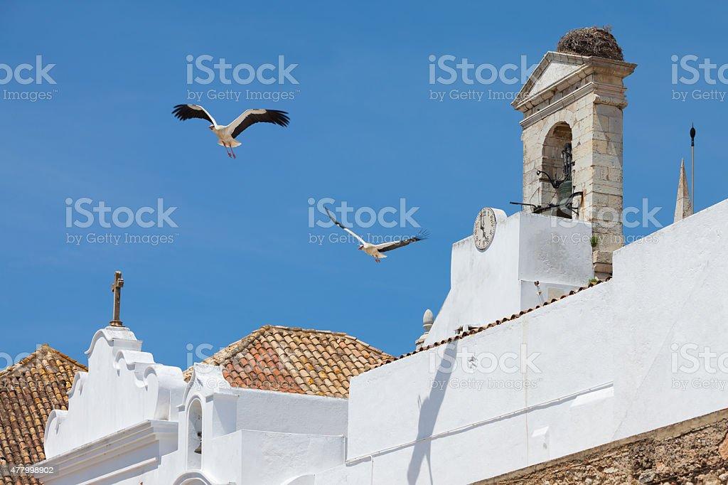 Liegestühle von Faro – Foto