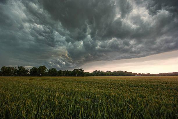 Storm über ein Feld – Foto
