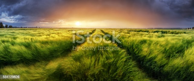 istock Storm and light on meadow, Panorama landscape 534129826