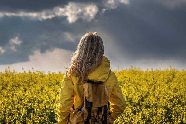 Storm and rain is coming. Hiking woman standing in rapeseed field and looking at cloudy sky stock photo