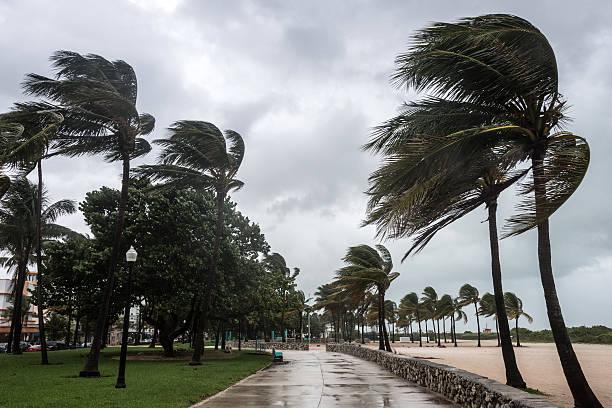 Storm at the beach picture id155437299?b=1&k=6&m=155437299&s=612x612&w=0&h=q9ei1ufvrpvxcuxvv z9thbbyv6uqxpl0col6fd g5m=