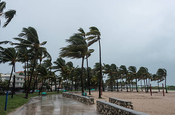 Storm at the beach Beach before the storm hurricane storm stock pictures, royalty-free photos & images