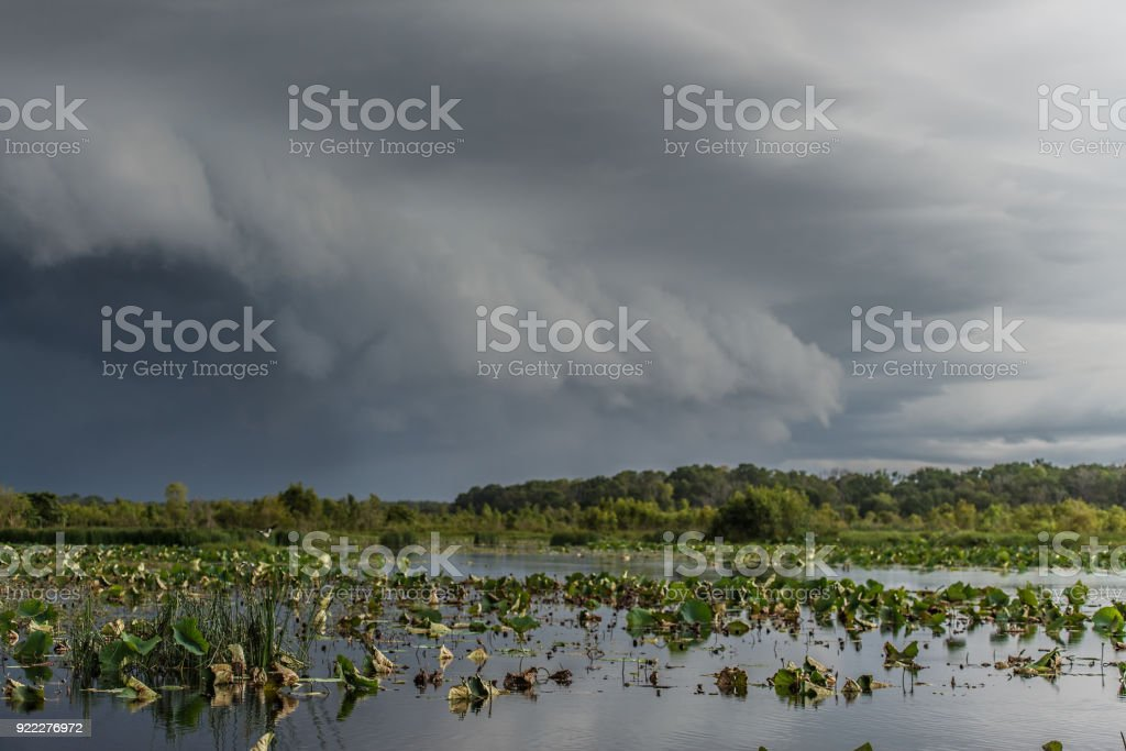 Storm cloud approaching over wetlands stock photo