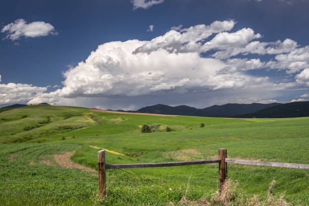 storm clouds are building over the mountains near lewistown in central montana - montana western usa stock pictures, royalty-free photos & images