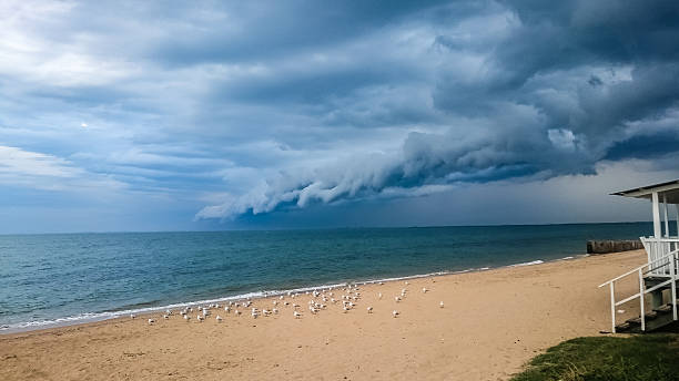 Storm clouds at beach with seagulls stock photo