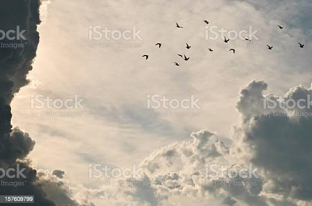Storm clouds picture id157609799?b=1&k=6&m=157609799&s=612x612&h=8pqrxgw4ee1fr3axbrdf1ytzersi6f4c7vfdkovmego=