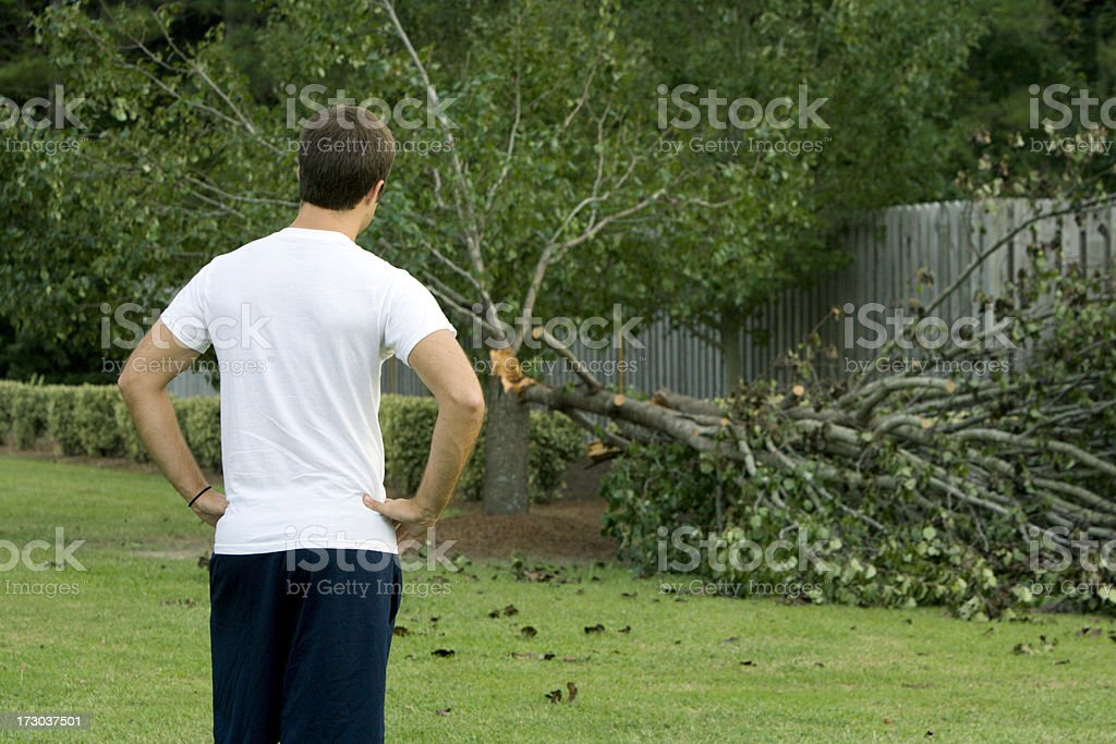 Storm Damage after a Hurricane stock photo