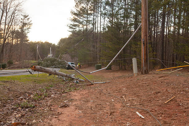 Storm Damage Mooresville, North Carolina, USA - February 25, 2016: Downed power wires and fallen trees are the aftermath of a severe thunderstorm with high winds gusts in Mooresville, North Carolina. knocked down stock pictures, royalty-free photos & images