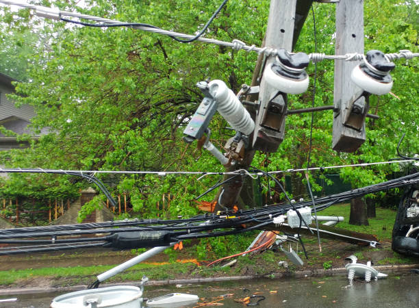 Storm damaged electric transformer on a pole and a tree Storm damaged electric transformer on a pole and a tree damaged knocked down stock pictures, royalty-free photos & images